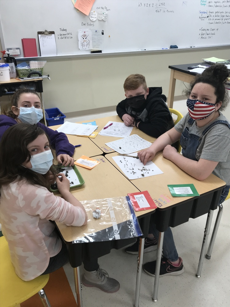 Fifth Graders Discover Owl Pellet Digestion Process in Ecology Lab
