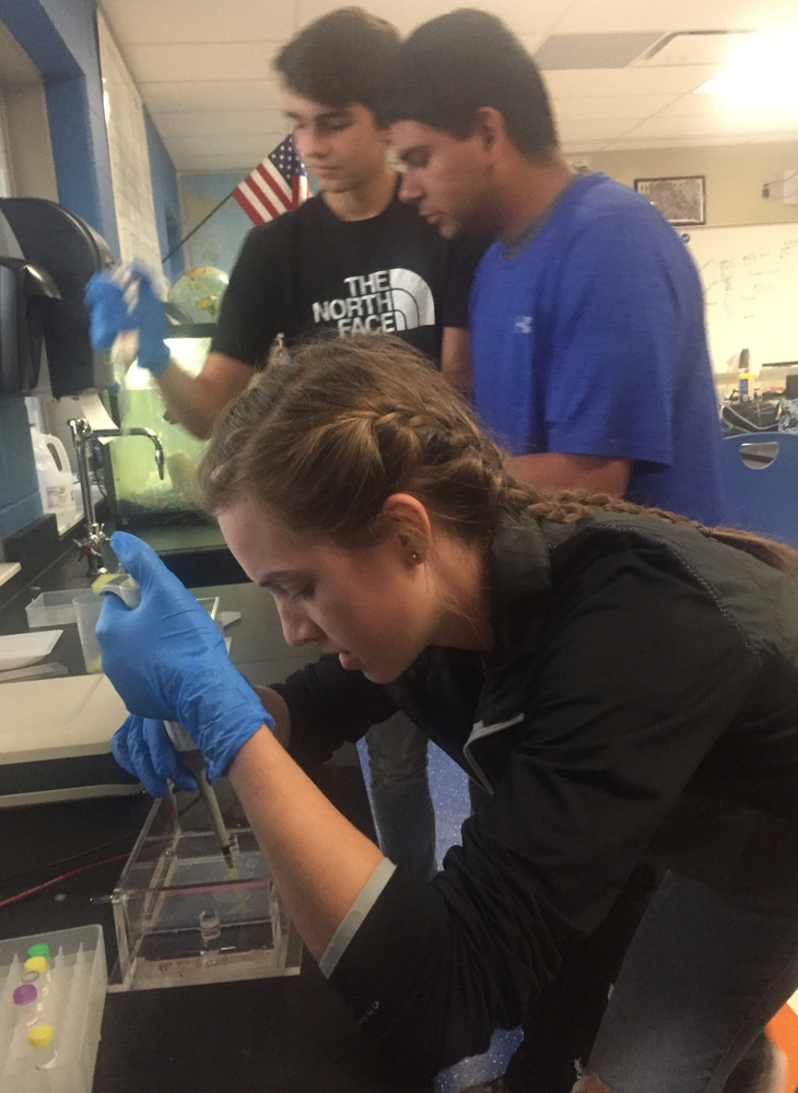 Marine Biology Student Study Possible Poaching Case in Electrophoresis Lab